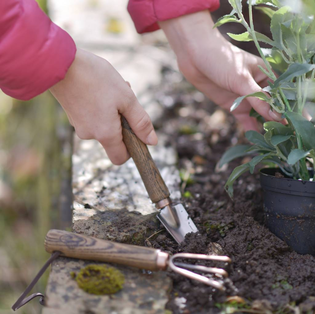 Mini Copper Garden Tools